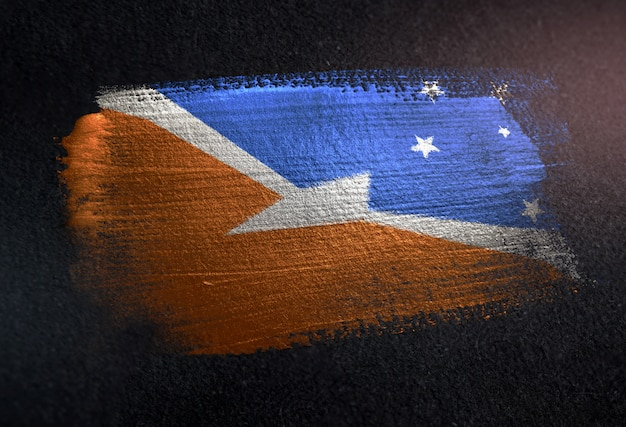 Tierra del fuego flag made of metallic brush paint on grunge dark wall