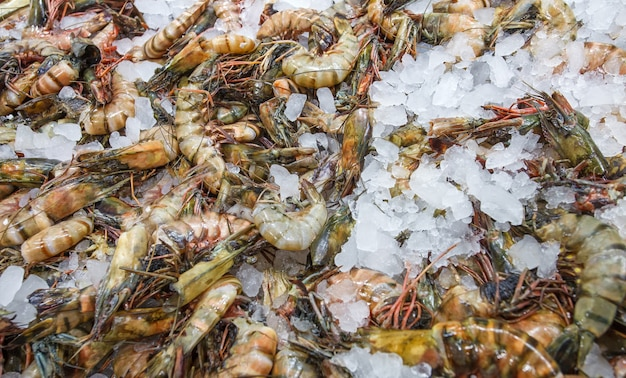 Tiger prawns on ice, many fresh raw whole chilled, at the fish market.