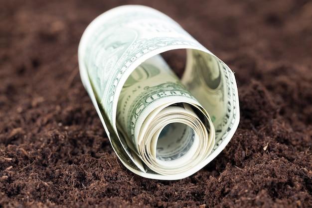 단단히 꼬인 미국 달러, 어두운 비옥 한 토양에 누워 필드에 근접 촬영