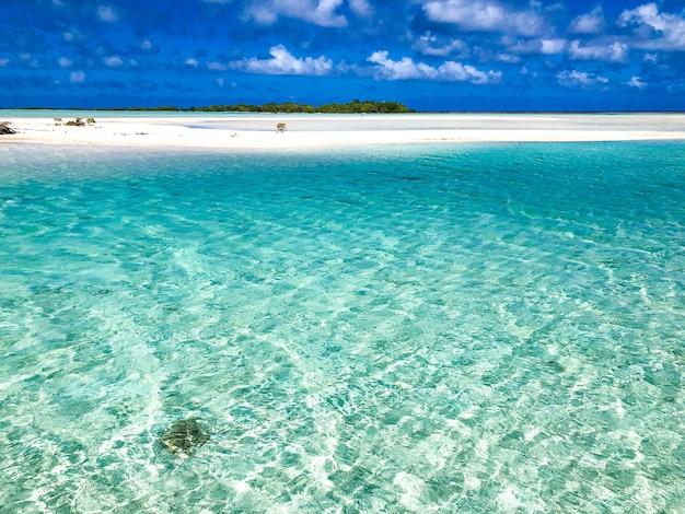Tikehau lagoon in french polynesia