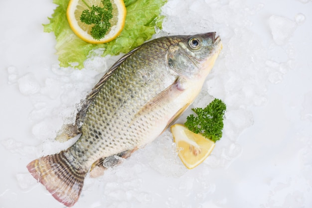 Tilapia fish freshwater raw tilapia from farm on ice market food, fresh fish