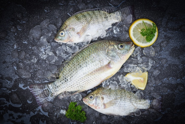 Tilapia fishes on ice