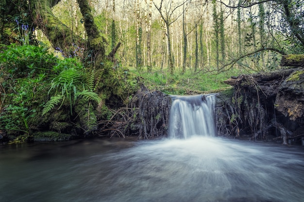 Time-lapse photography of waterfall during daytime