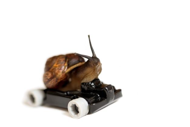 時間、スピード、ラッシュ。成功のコンセプト。スピーディーなカタツムリ。カーレーサー。白で隔離されます。