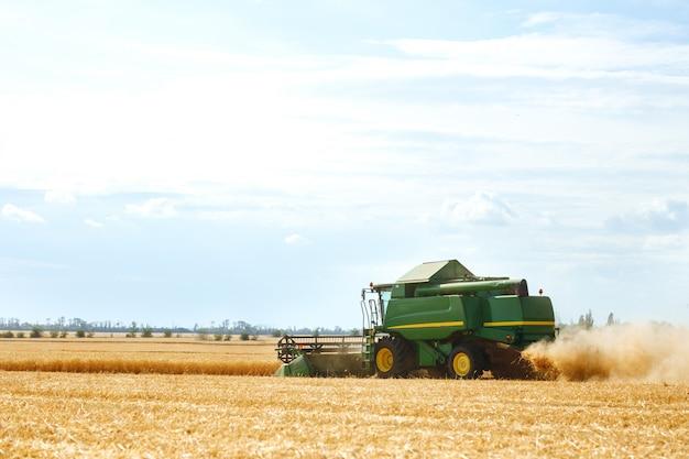 수확 시간! 결합 수확 밀의 작품의 아름다운 전망. 밀밭 작업을 수확하는 수확기 기계. 황금 익은 밀밭 수확 수확기 농업 기계를 결합합니다.