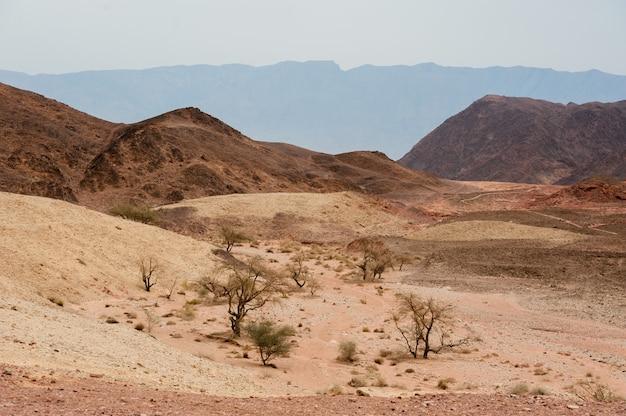 イスラエル南部の砂漠にあるティムナ自然公園。