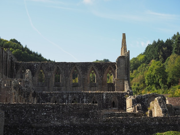 Tintern의 tintern abbey(abaty tyndyrn)