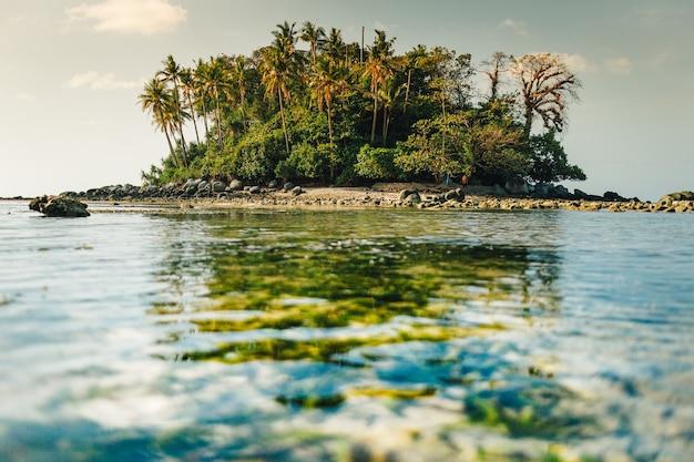투명한 바다가있는 작은 화려한 섬