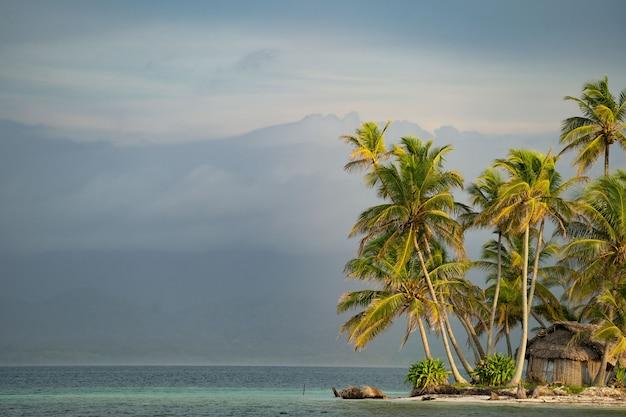 Крошечный тропический, необитаемый остров в море с пальмами и горами на заднем плане, копией пространства. концепция отпуска и путешествий.