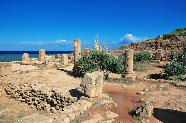 Tipaza roman ruins of stone and sand in algeria, africa