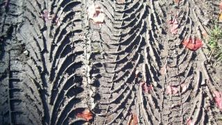 Tire imprint  texture