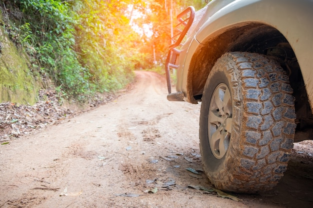 Tire on summer countryside way. outdoor, adventures, expedition, explore and travel.