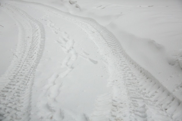 The tire traces on snow
