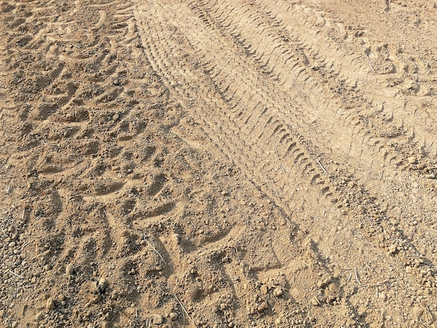 Tire track of many vehicle on ground