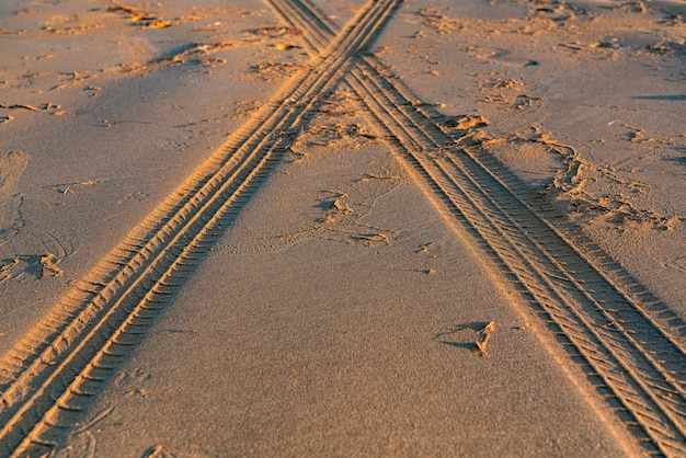 모래에 타이어 트레드 자국