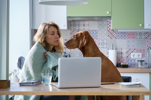 노트북에서 새 일자리를 찾고 있는 담요에 강아지와 함께 부엌에서 피곤 슬픈 실직 여성
