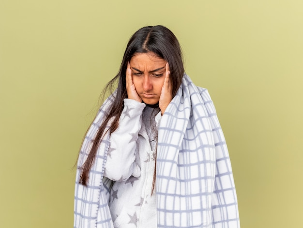 Tired young ill girl looking at down wrapped in plaid putting hands on cheeks isolated on olive green background