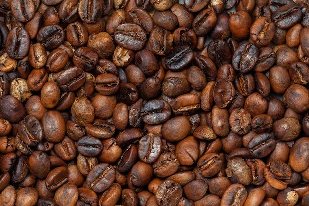 구운 유기농 커피 원두-coffeea arabica