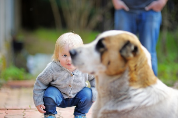 Toddler boy playing with big dog outdoors