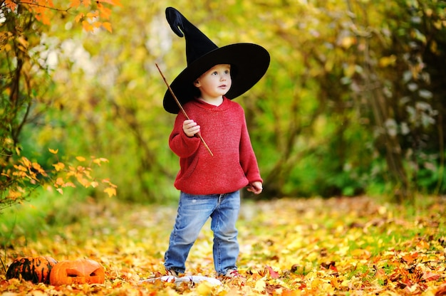 Toddler boy in pointed hat playing with magic wand outdoors. little wizard