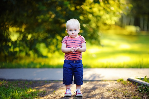 Toddler boy walking in the park at the sunny day