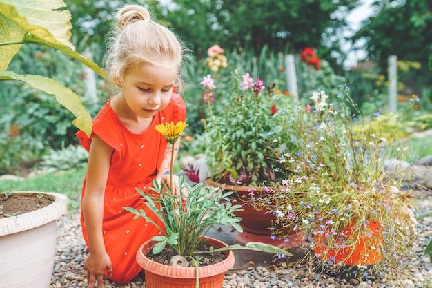 Toddler girl wearing red dress sniff big yellow flower in garden