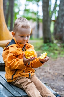 Toddler holding small carved pumpkin, copy space for cute halloween banner