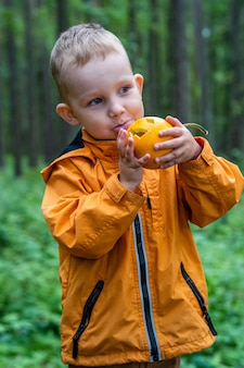 Toddler playing with carved pumpkin