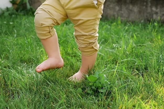 Маленький сын в бежевых штанах босиком гуляет по свежей зеленой траве в солнечный день крупным планом с низким углом