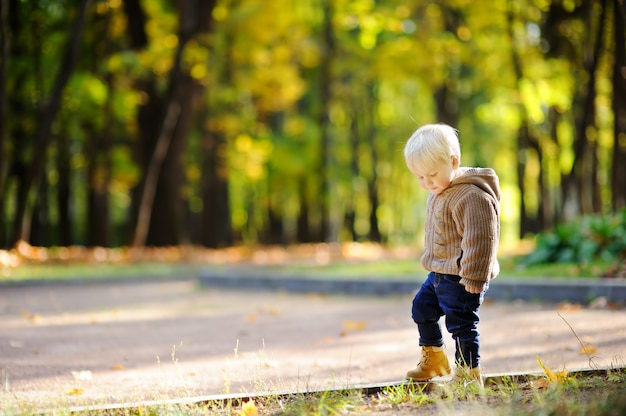 Toddler walking in the park at the autumn. little boy enjoy sunny day