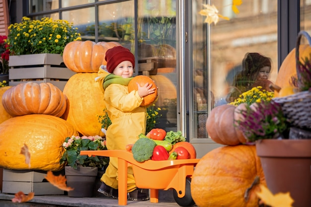 A toddler in a yellow overalls stacks vegetables in a toy car among large pumpkins at the fall fair.