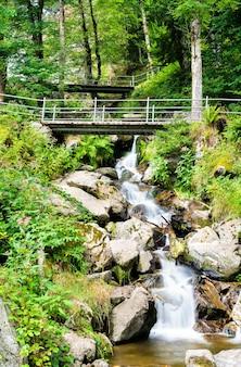 Водопад тодтнау в горах шварцвальд, германия
