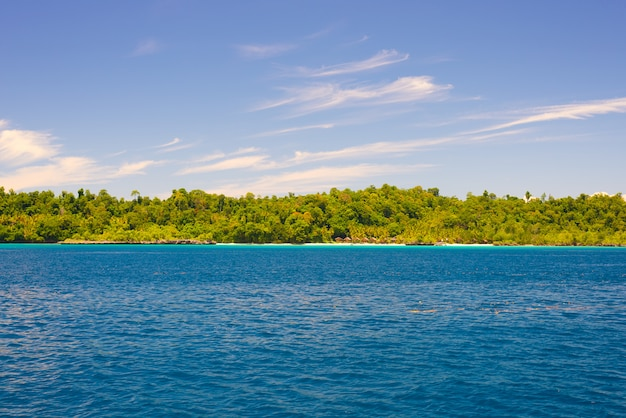 Togean islands coastline with lush green jungle in turquoise sea, sulawesi, indonesia.
