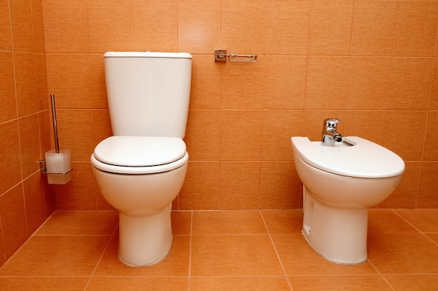 Toilet and bidet in bathroom