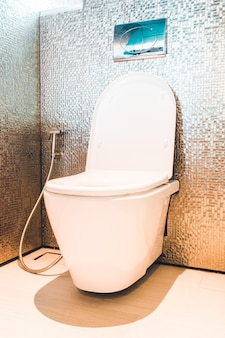 Toilet hung on the wall
