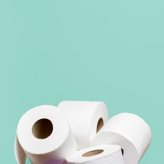 Toilet paper rolls in holder with copy space