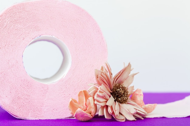 Toilet paper rolls with natural flowers close up