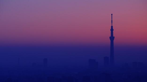 東京市と東京スカイツリータワー有名な旅行先ランドマのある東京市の空撮