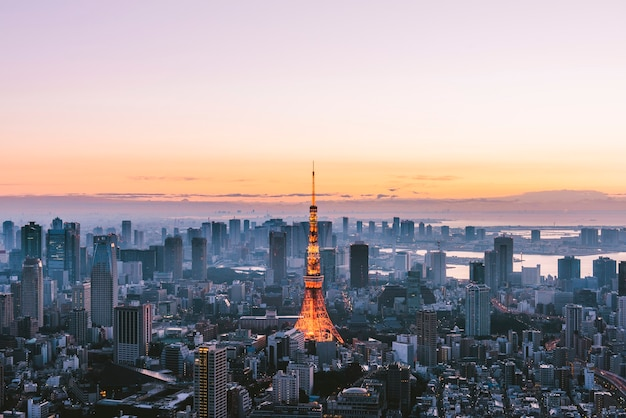 東京タワーが際立つ東京シティ