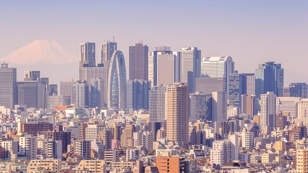 Tokyo, japan - february 11, 2016 : cityscape of tokyo in japan with fuji mountain as a background on february 11, 2016 at tokyo, japan.