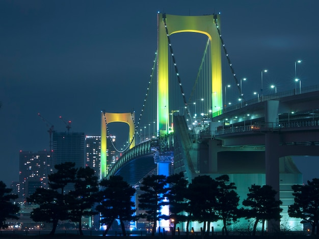 Tokyo rainbow suspension bridge supports by night with scenic colourful illumination