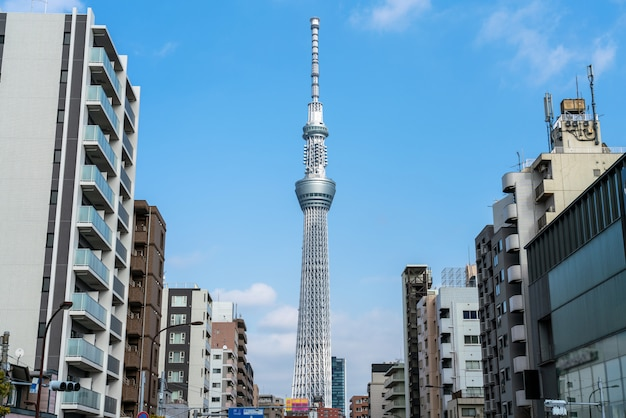 Tokyo sky tree locate on the street in tokyo town when clear sky, japan