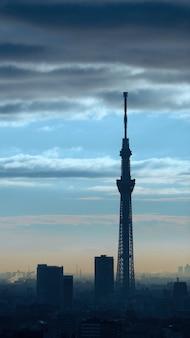 東京スカイツリーのシルエットの建物と空と雲と夕日。