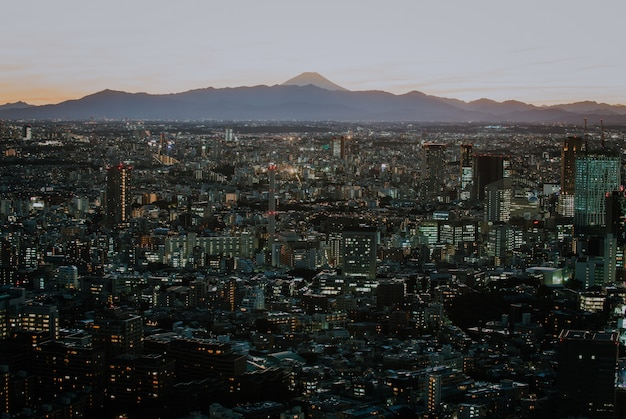도쿄 스카이 라인 및 위에서 건물, 백그라운드에서 후지산으로 도쿄 현의 전망