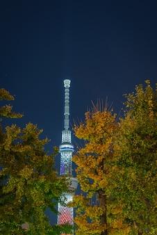 Tokyo skytree япония в ночное время