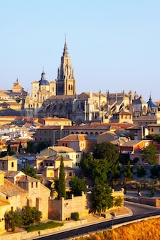 Toledo cathedral in summer morning Free Photo