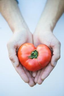 ハートの形をしたトマト。健康食品。
