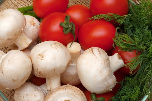 Tomato, mushrooms and fennel