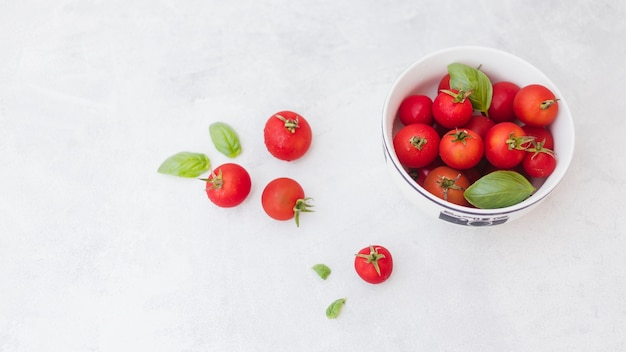 Tomatoes and basil leaves on white backdrop
