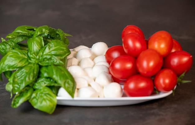 이탈리아 국기 모양의 접시에 토마토, 치즈, 바질
